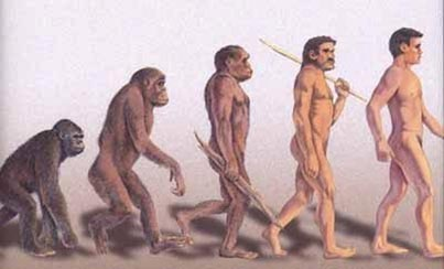 human evolution and intelligent design